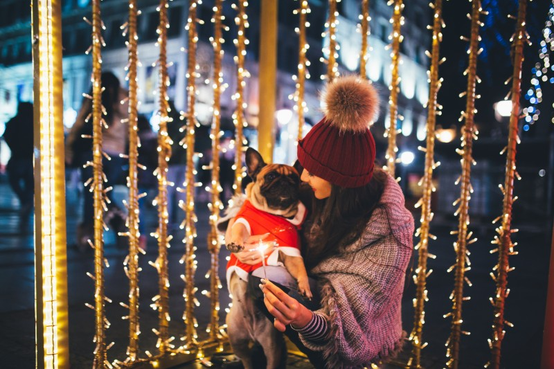 Taking your pet on a date for some holiday fun with pets!